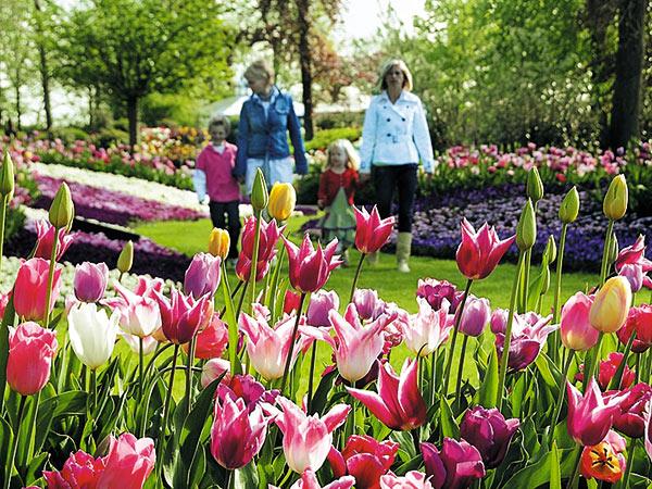 Keukenhof und Blumenkorso / Niederlande Image