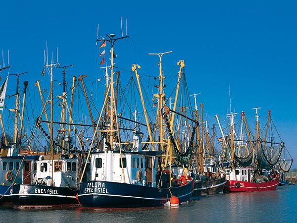Ostfriesland & Insel Langeoog Image