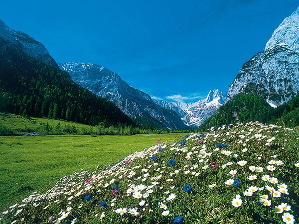 Pertisau am schönen Achensee / Tirol Image