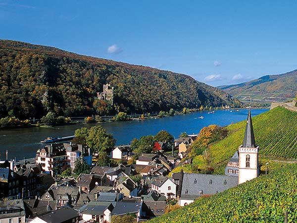 Eltviller Rosenfest und Rüdesheim Image