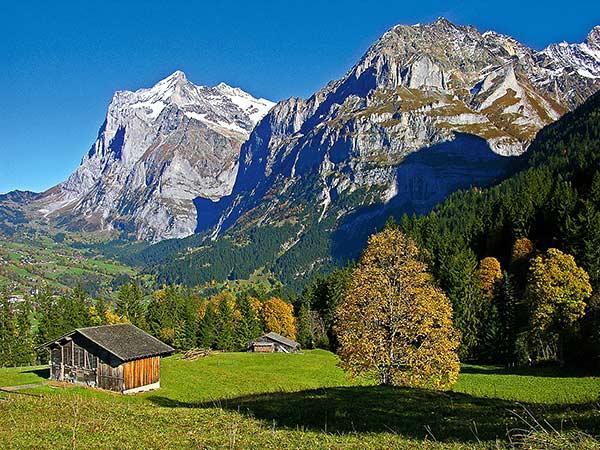 Berner Oberland – Jungfraujoch / Schweiz Image