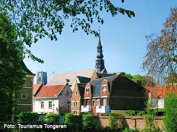 Trödelmarkt Tongeren & prachtvolles Lüttich Image